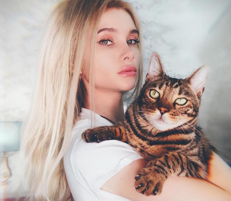 Лисса АВЕМИ кот
